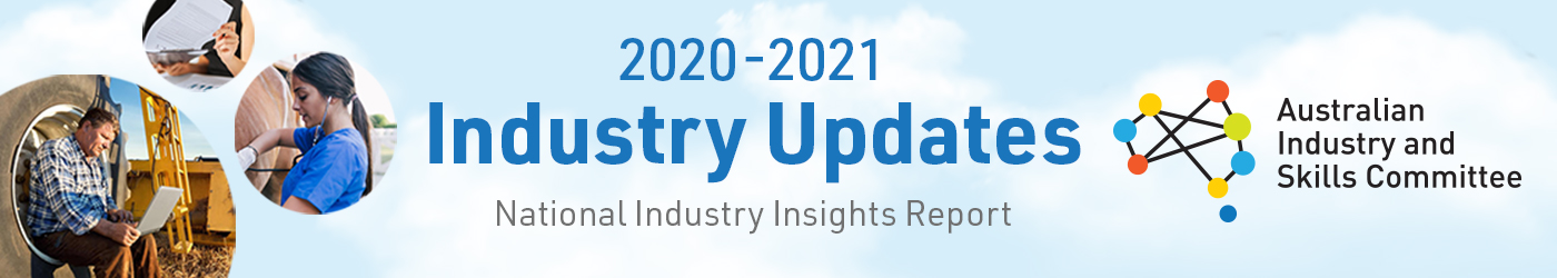 Decoration only - page banner displaying text about the 2020 and 2021 updates to the National Industry Insights Report.
